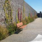 Usage du gabion comme mur de séparation végétalisé