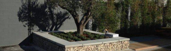 Comment réaliser la pose d'une jardinière en gabion dans son jardin ?